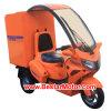 Trike 전기 스쿠터/전기 세발자전거 (DM82D)