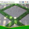Hilo monofilamento resistente de césped artificial revisión de precios (BSB)