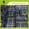 Modèle en plastique d'anniversaire de bâche de protection de HDPE en gros