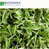 Capsule di dimagramento naturali botaniche