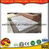 Het UV Marmeren Panel/UV Met een laag bedekte Marmeren Blad van de pvc- Steen voor Ceilign en Muur
