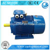 Yx3 hoog-Efficiency Green Induction Motors met Ce Certificate (yx3-801-2)