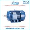 Motore asincrono a tre fasi di IEC di serie di Y