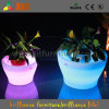 점화 정원과 Home Decorative Bowl Flower Pots