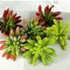 Flor artificial de la planta de los Succulents artificiales naturales decorativos del tacto (SW17666)
