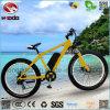 합금 프레임 500W 후방 모터 전기 뚱뚱한 타이어 바닷가 자전거