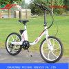 vélo électrique femelle du poids léger 250W