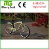 3 LED Leven 기능 전시 Ebike 고전적인 함 36V 250W 전기 자전거