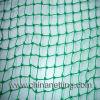 Grüne Farbe Anti-Tier Netz (HT-AAN-001)
