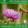 Выдержка Thistle молока 100% естественная (HPLC 70%, 80%, 85% Silymarin/UV)