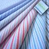 Tessuto tinto normale -1 della camicia del jacquard di TC