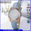 Montre-bracelet occasionnelle classique de dames de mode de quartz d'ODM (Wy-095E)