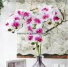 De echte Bloemen In het groot Australië van het Latex van de Orchidee van de Slinger van de Kunstbloem van de Bloemen van Faux van het Latex van de Orchidee van de Aanraking Kunstmatige Kunstmatige