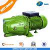 제트기 각자 빠는 펌프 1 HP AC 수도 펌프 제트기 양수 깨끗한 물