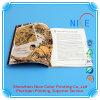 Abitudine Leaftlet/Brochure/Booklet/Flyer Printing/Catalogs e Magazine Printing