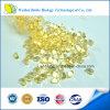 Végétarien de nourriture biologique DHA Softgel de pétrole d'algues