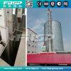 silo di grano 10-5000t per frumento, memoria del cereale