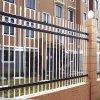 Recinto di filo metallico ornamentale rivestito ornamentale del PVC del recinto di filo metallico