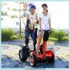 2つの車輪の大人の電気スクーター(ESIII)