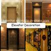 Decorazione decorativa del comitato del portello dell'elevatore dell'acciaio inossidabile acquaforte