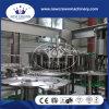 China-Qualität Monoblock reine Wasser-Maschinen-Selbstzeile für Flasche 0.15-2L
