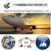 Spedizioniere certo & professionale di trasporto dell'aereo da trasporto dal continente della Cina ad universalmente