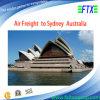 メルボルンまたはシドニーオーストラリアへの中国Air Freight Supplier