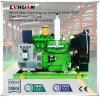 Gebruik van het Aardgas van de Verplaatsing van de Lage Prijs van de Generator van het gas het Lage