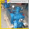 Dsr65V 공기 송풍기 루트 진공 펌프