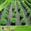 Anti-UV 100% PP tela no tejida Cubierta de plantas / Weed Mat