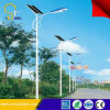 8000hrs Lifespan Energie-Einsparung 100W LED Solar Street Light mit Polen System
