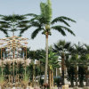 庭Decorative 35f Fake Artificial Coconut Palm Tree