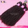 Drawn Raw cabelo humano pode colorir qualquer cor curta Virgin Mongol Hair
