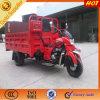 Triciclo motorizado fuerte y pesado del cargo en Asia del Sur