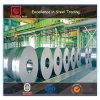 Bobina de aço revestida zinco galvanizada (CZ-C11)