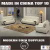 Sofa moderne de bâti en bois de cuir de graines de Miami premier