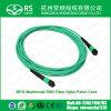 MPO 다중 상태 Om3 광섬유 접속 코드