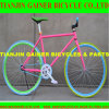 Tianjin 700c Road Bicycle Equipped com Fixed Gear