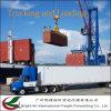 Compagnia di spedizioni Contanier dell'oceano di servizio di logistica dalla Cina ad universalmente