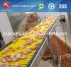 Jaula del acoplamiento de alambre del ganado para el pollo del huevo de la granja avícola
