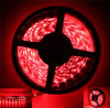 Christmas Lights Outdoor Online Retail Store 5W/M 5050 LED Strips