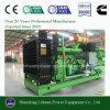 10kw에서 CNG 액화천연가스를 위한 1000kw에 천연 가스 발전기 세트