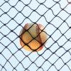 Сеть носка бейсбола сети бэттинга бейсбола сети тренировки бейсбола