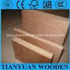 Madera contrachapada comercial laminada barata/madera contrachapada del eucalipto