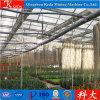 고장 가격에 판매에 있는 정원 온실
