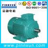 Vacuum PumpのためのGOST Three Phase AC Motor