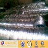 SGS Certificate 0.1mm 316 Stainless Steel Wire (LT-028)