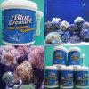 산호 (HZY024)를 위한 칼슘 보충교재