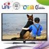 2015 Uni/OEM High Resolution Ultra Slim 42 '' e-DEL TV