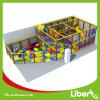 Het opwekken van Apparatuur van de Speelplaats van Jonge geitjes de Binnen (le. T2.212.263.00)